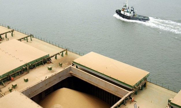 Argentina: soybean imports triple exports
