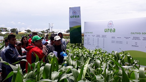 Urea imports yet reach record volume