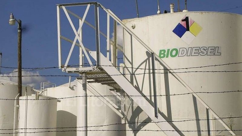 Which are the most affected biodiesel industries by EU and US antidumping duties