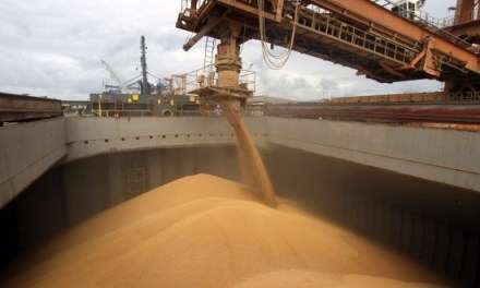 Reuters: idle capacity of the soybean crushing industry in Argentina, largest since 1987