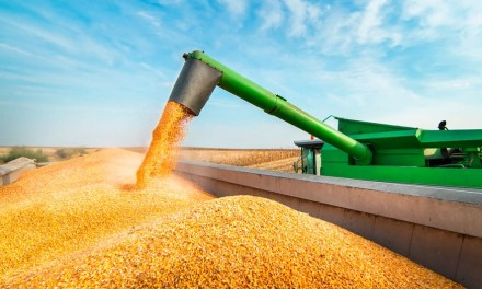 Soybean harvest in Argentina advances