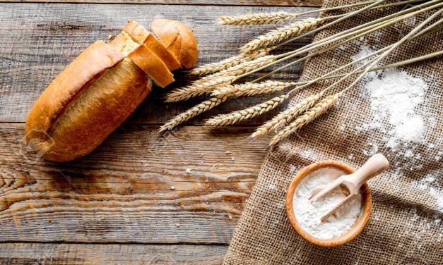 Government approves a new wheat flour quality standards protocol