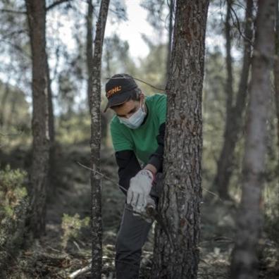 Operario forestal realizando labores de mantenimiento