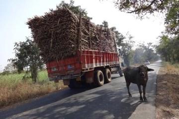 Un camión con exceso de carga: sobrecarga