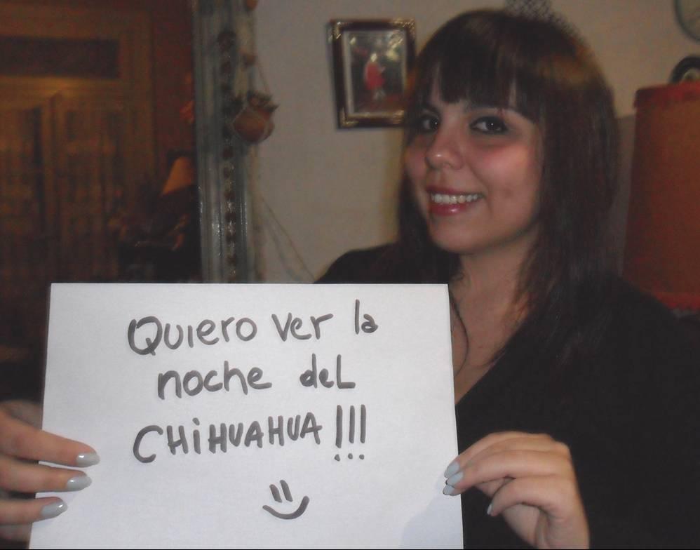 Foto Chihuahua (3/3)