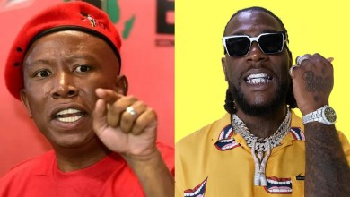I look forward to receiving Burna Boy - South African politicial leader, Julius Malema assures Nigerian singer of his safety in South Africa