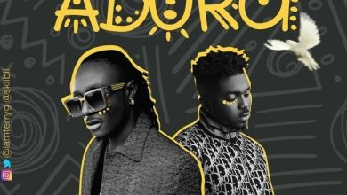 Terry G - Adura Ft. Skiibii (Prod. by Young John) Mp3 Audio Download