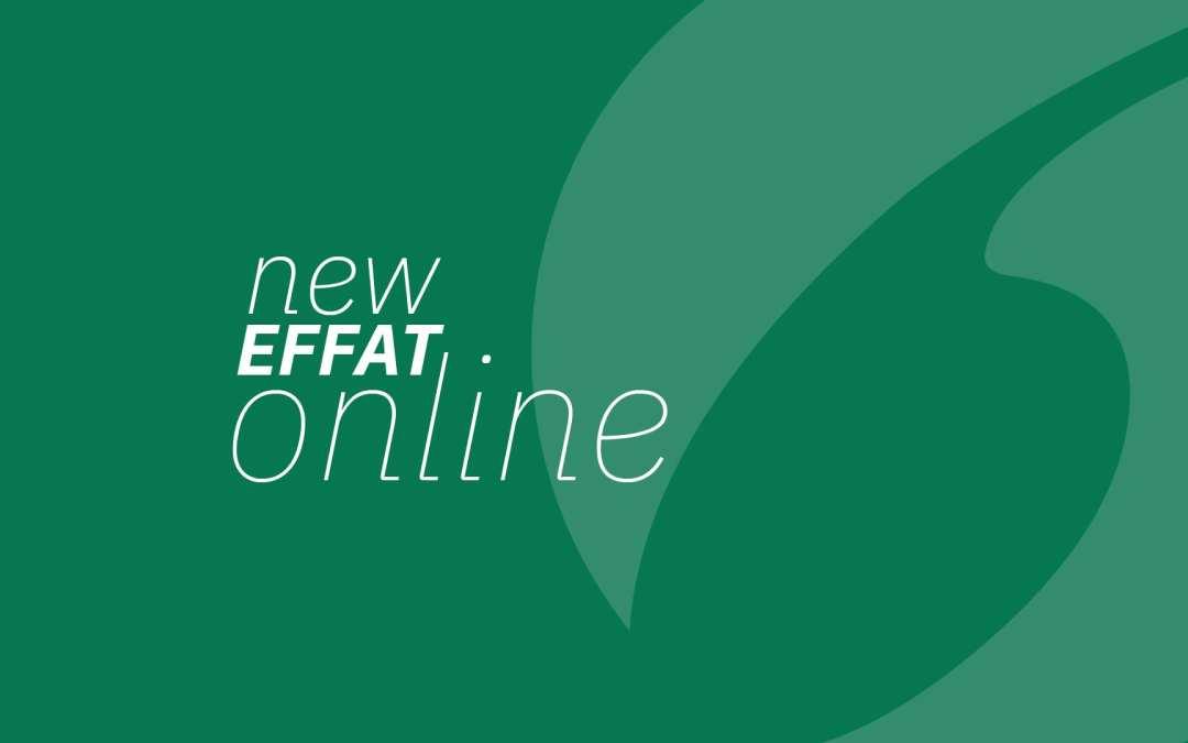 Effat website has a new look