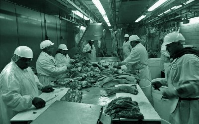 EFFAT meat sector report: poor conditions to blame for spread of Covid-19