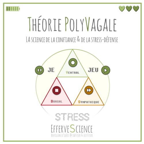 Théorie PolyVagale, confiance, stress-défense, et EfferveScience