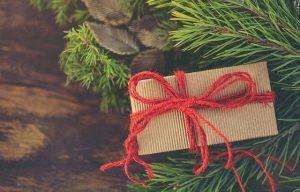 Top 20 idées cadeaux de Noël écolos