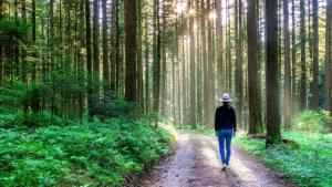 5 habitudes à prendre immédiatement pour faire durer ce mode de vie plus lent au-delà du confinement