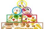 Pyramide alimentaire chez les enfants: 0-6 ans
