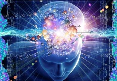 Génial … Notre cerveau peut stocker l'information de tout l'Internet