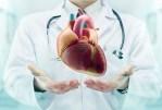 L'insuffisance cardiaque congestive: causes et traitement