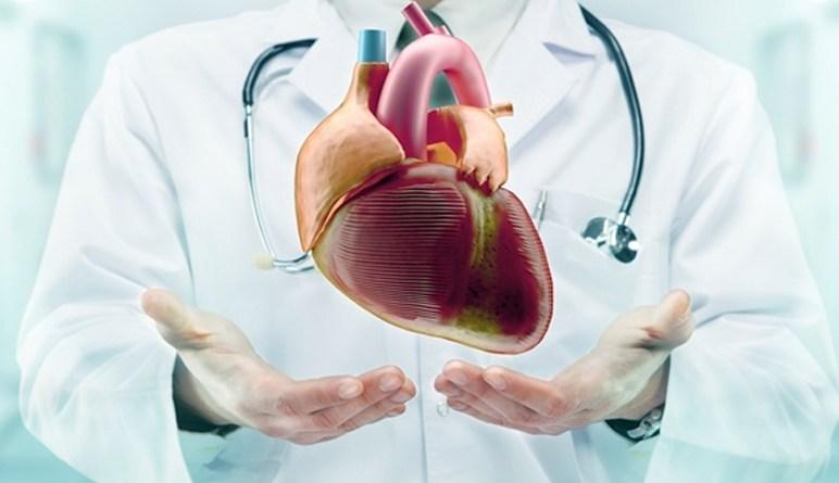insuffisance cardiaque, coeur, maladie de coeur, maladies du coeur