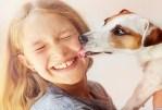 6 maladies que vous pouvez « obtenir » de votre chien