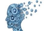 Le sommeil provoque des changements importants dans le cerveau