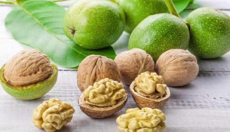 noix, noix de Grenoble, les probiotiques, les prébiotiques, les intestins, microflore,inflammation intestin