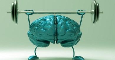 notre cerveau, comment entrainer son cerveau