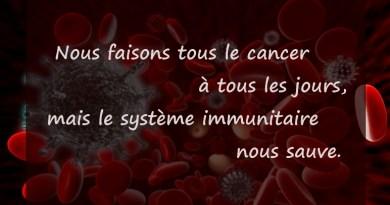 Saviez-vous que, le cancer, les lymphocytes T et B, les lymphocytes, lymphome