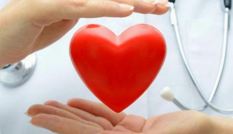 le coeur, notre coeur, les maladies du coeur, coeur en bonne santé