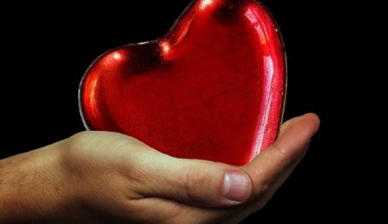 les maladies du cœur, notre cœur, cœur, infarctus, battements du cœur, maladies cardiaques