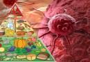 cancer, traitement de cancer, comment se protéger de cancer