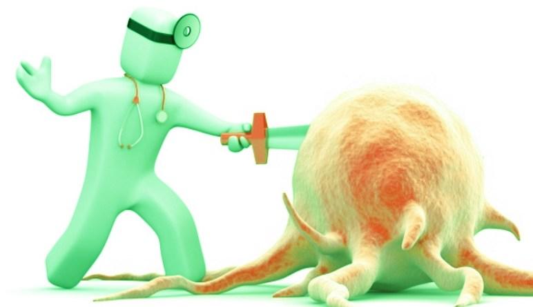 la lymphe, les lymphocytes