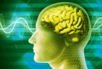 Ces 5 faits sur le cerveau vont changer votre vie