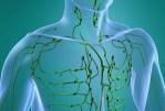 Pourquoi il faut prendre soin de notre circulation lymphatique?