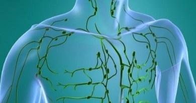 système lymphatique, la lymphe
