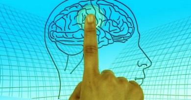 tumeur, cancer du cerveau, tumeur au cerveau, premiers signes de tumeur