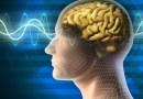 , le coronavirus affecte le cerveau,coronavirus, SRAS, Grippe, virus, maladies infectieuses, covid-19, covid, choléra, Ébola