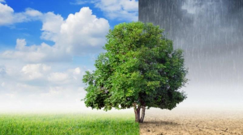 Le changement climatique peut-il affecter la propagation des virus?