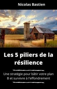 Les 5 piliers de la résilience