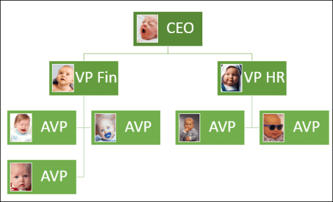PowerPoint Picture Organizational Chart