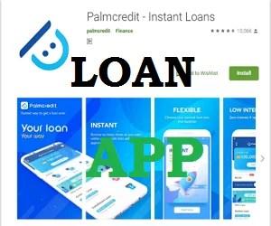 Palmcredit Loan Registration Portal
