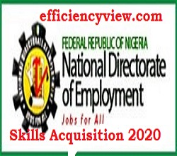 National Directorate of Employment NDE Skills Acquisition 2020/2021