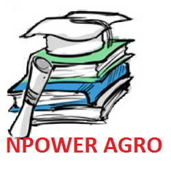 Closing date/deadline for filling 2020 Npower Agro FMARD Agency Validation Survey Form batch A&B Beneficiaries