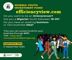 Federal Government unveil 2020/2021 NYIF Loan Application Form starting date