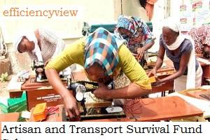 Federal Government Artisan and Transport Survival Fund Scheme Application Registration Form 2020/2021