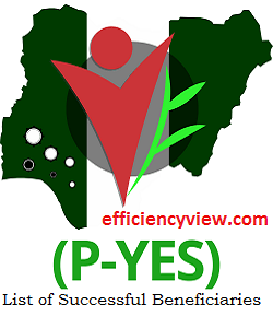 PYES Applicant Register Login Portal - how to sign up to create account successfully - www.p-yes.gov.ng