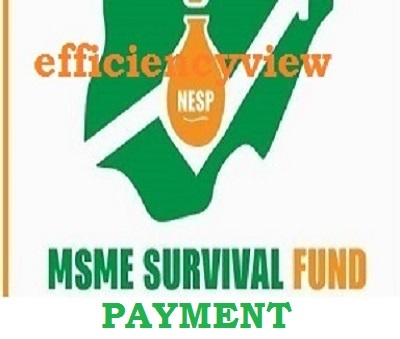 Survival Fund Disbursement 2021/2022 Update: FG to begin more Payment this week