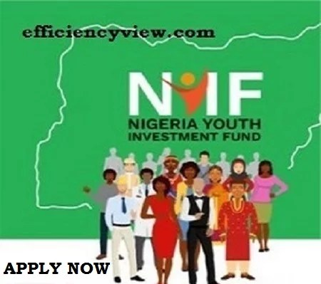 Nigeria Youth Investment Fund Loan 2021/2022 Link Portal reopens – Register Here