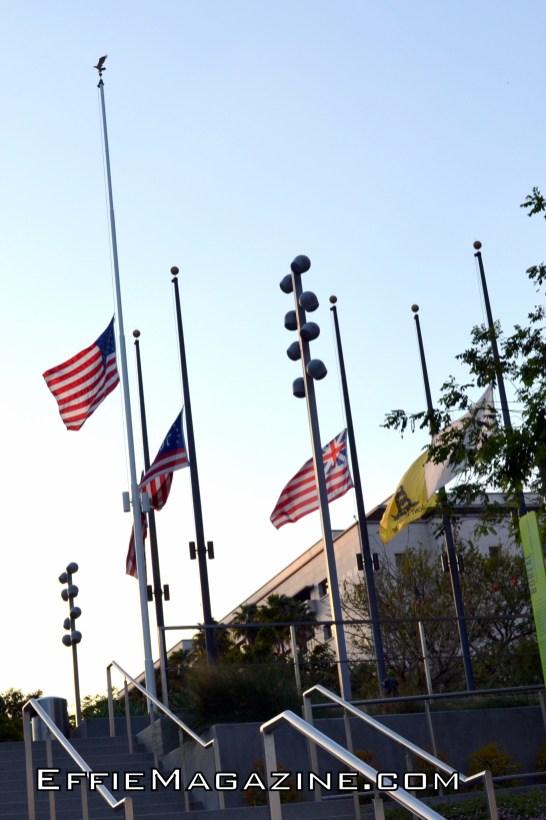 Grant Park Flags @ Half-Mast