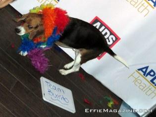 aids-walk-2016-kick-off-party-043