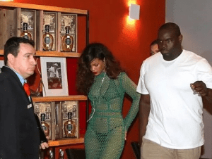 Rihanna steps out in a mesh dress, with her panties and bra visible (Photos)