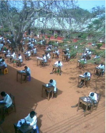 students under tree to cheating