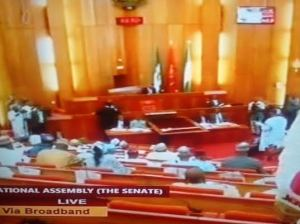 Saraki Unveils Ministerial List On Live TV, Amaechi, Fashola, Lai Mohammed, Ngige, Included